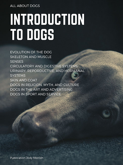 Introduction to Dogs