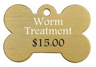worm 2-2.jpg