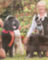 Jody and dogs use.jpg