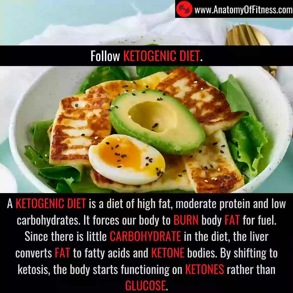 KETOGENIC DIET for guaranteed FAT BURN.