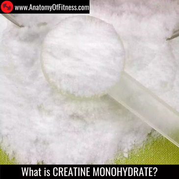 What is CREATINE MONOHYDRATE?