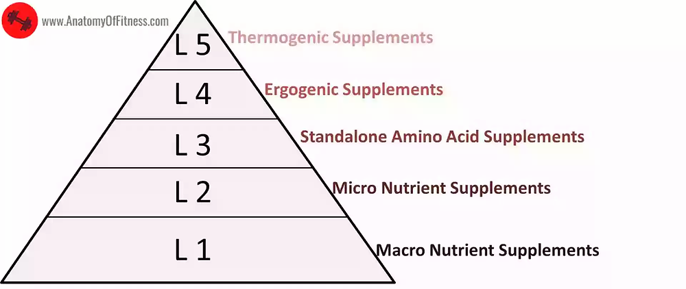 SUPPLEMENTS Levels or Types for FAT LOSS and MUSCLE GAIN.