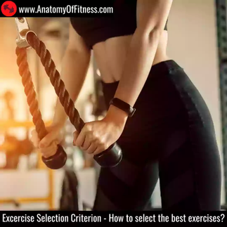 Exercise Selection Criterion - How to select the best exercises.