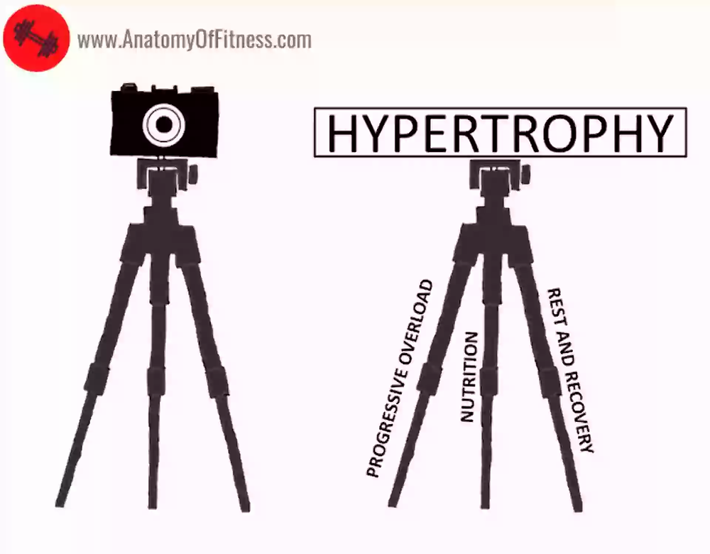 The HYPERTROPHY tripod.