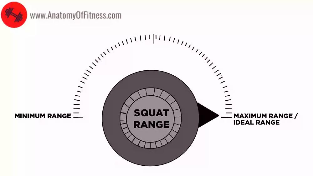 The ideal SQUAT Range is the MAXIMUM SQUAT Range.