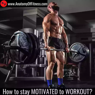 How to Stay Motivated to Workout?