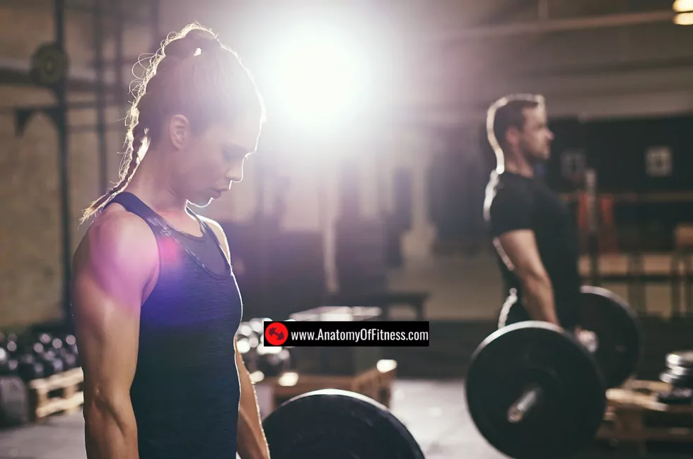 How to build muscle.webp