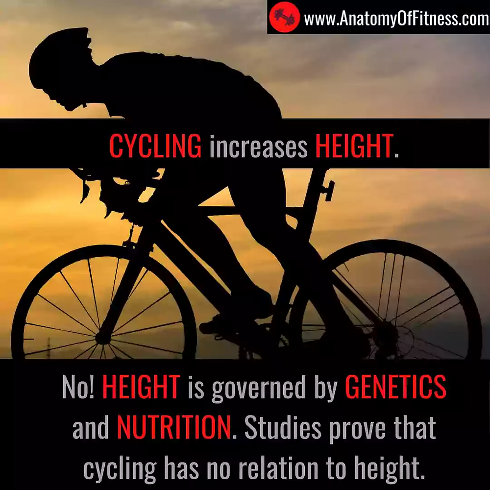 Does CYCLING increase our HEIGHT?