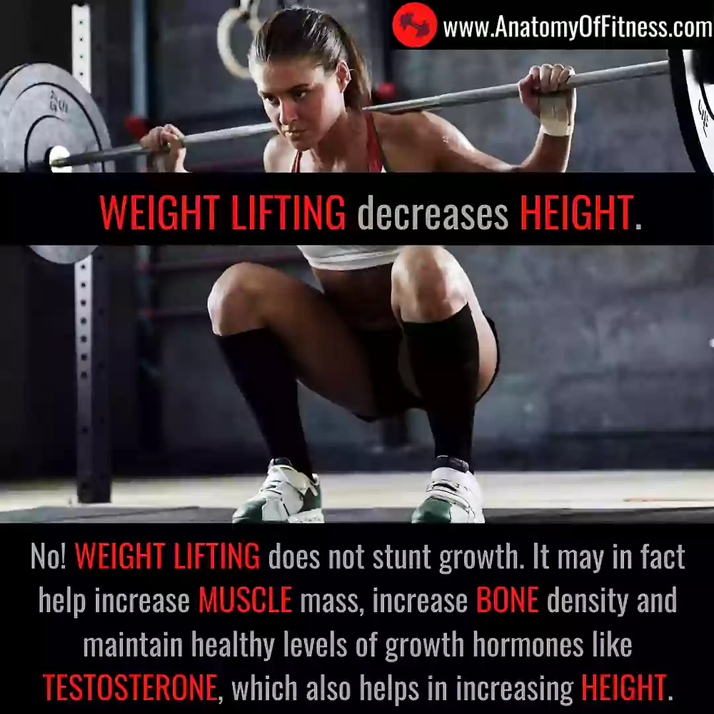 Does WEIGHT LIFTING decrease (or stunt) our HEIGHT?
