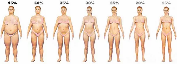 Women's body fat percentage.