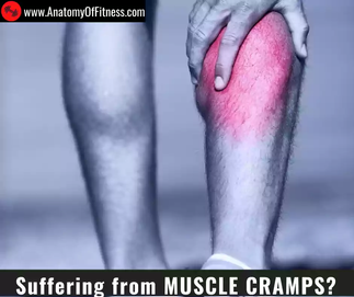 Suffering from MUSCLE CRAMPS?