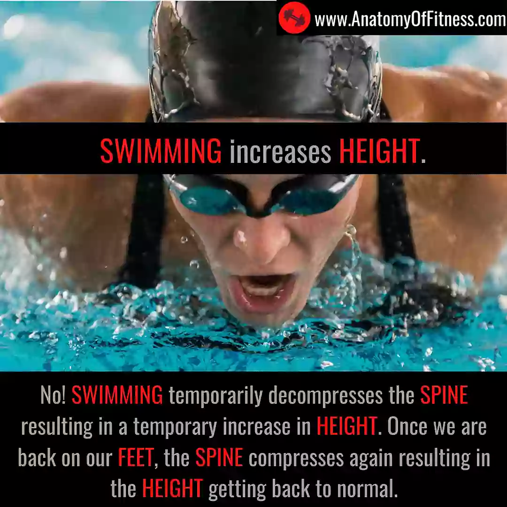 Does SWIMMING increase our HEIGHT?