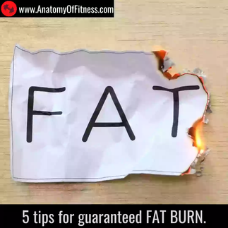 5 tips for guaranteed FAT BURN!