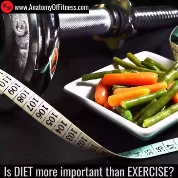Is DIET More Important than EXERCISE?