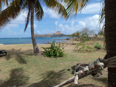 View of Pigeon Island