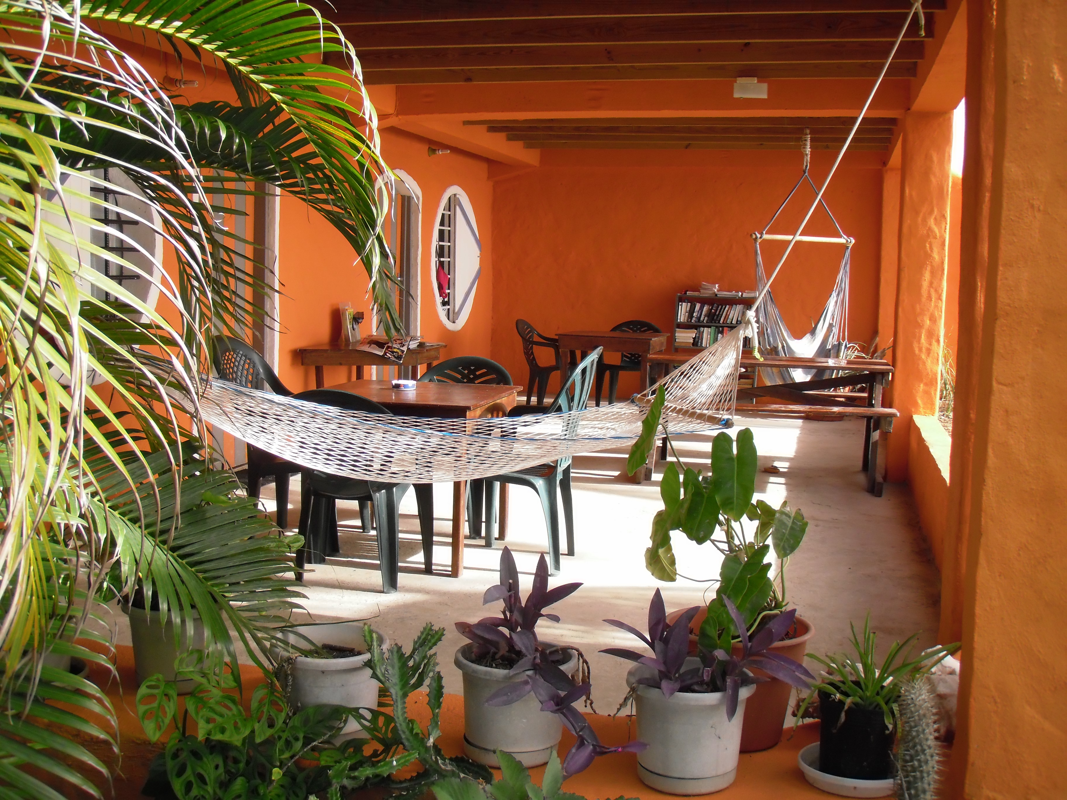Downstairs Patio, Bay Guesthouse