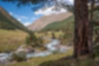 Долина Марки