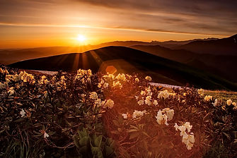 Отдых в горах Кавказа
