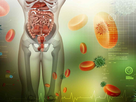 7 Ways to Bullet Proof Your Gut Health