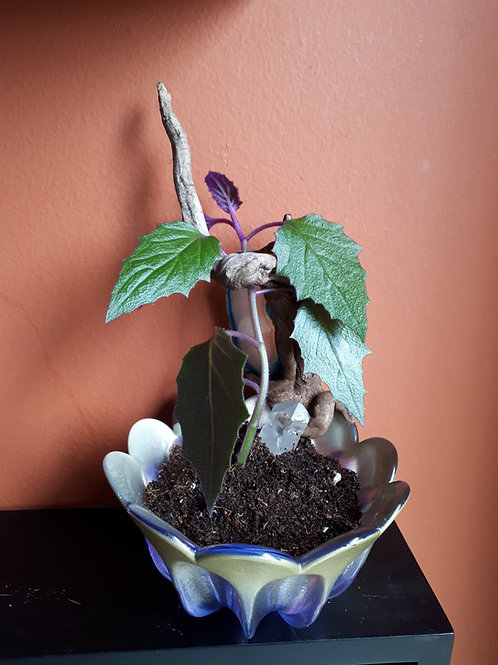 Purple Flower Bowl ReSculpt