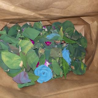 Salvaged Leaves