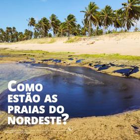 Como estão as praias do nordeste um ano após o derrame de petróleo?