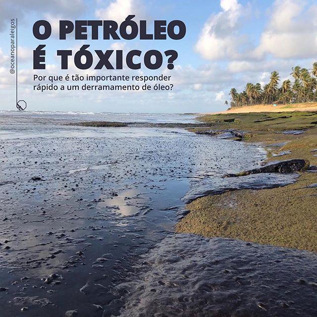 O petroleo e toxico? | grande mancha de petroleo na praia do NE