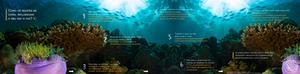 Influência dos recifes de corais