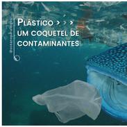Plástico: um coquetel de contaminantes