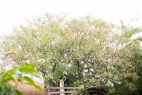 צלם חתונה חברתית