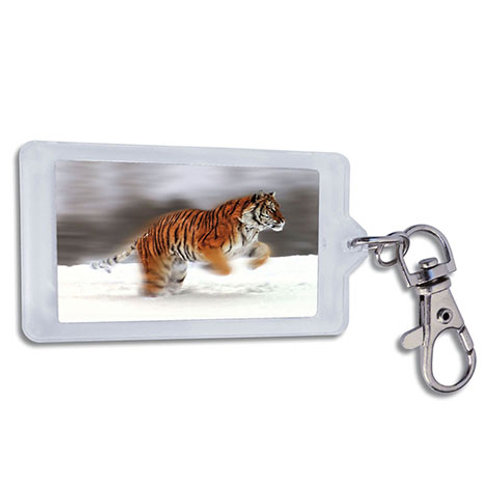 Keychain TIGER 12-pack