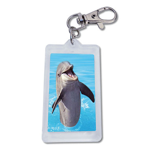 Keychain DOLPHIN 12-pack