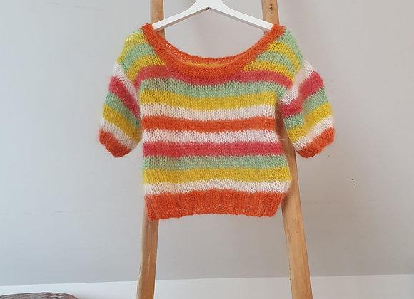 Brimanella trui multicolor