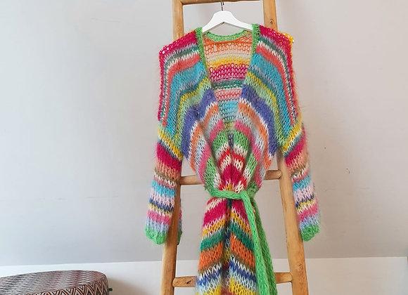 Brimanella cardigan multicolor