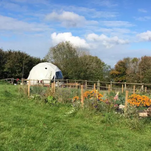 View towards the geo-dome from the veg patch, and camping field.