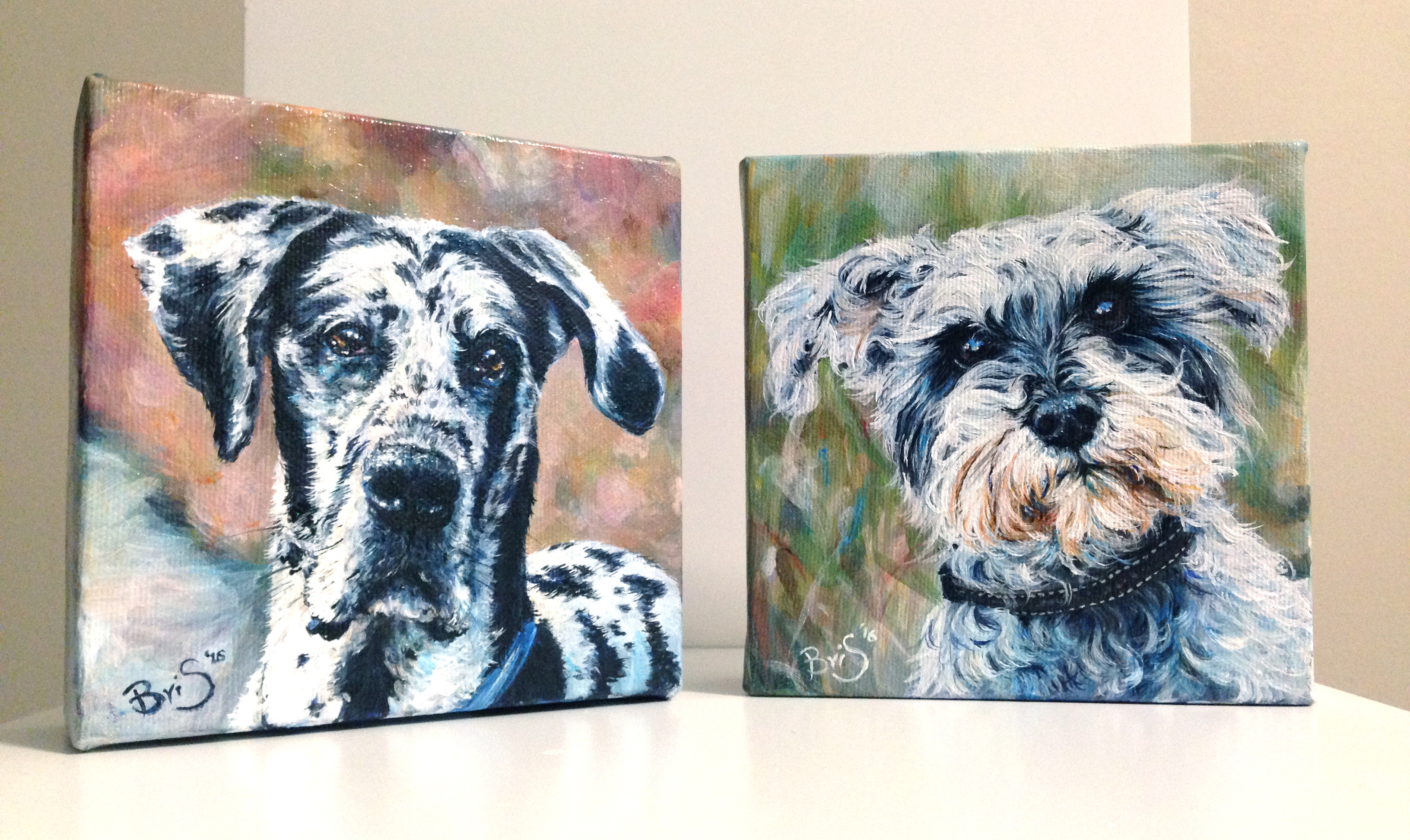 """Two 5"""" x 5"""" Furry Faces"""