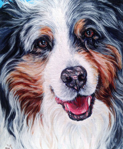 8 by 10 portrait of a smiling dog