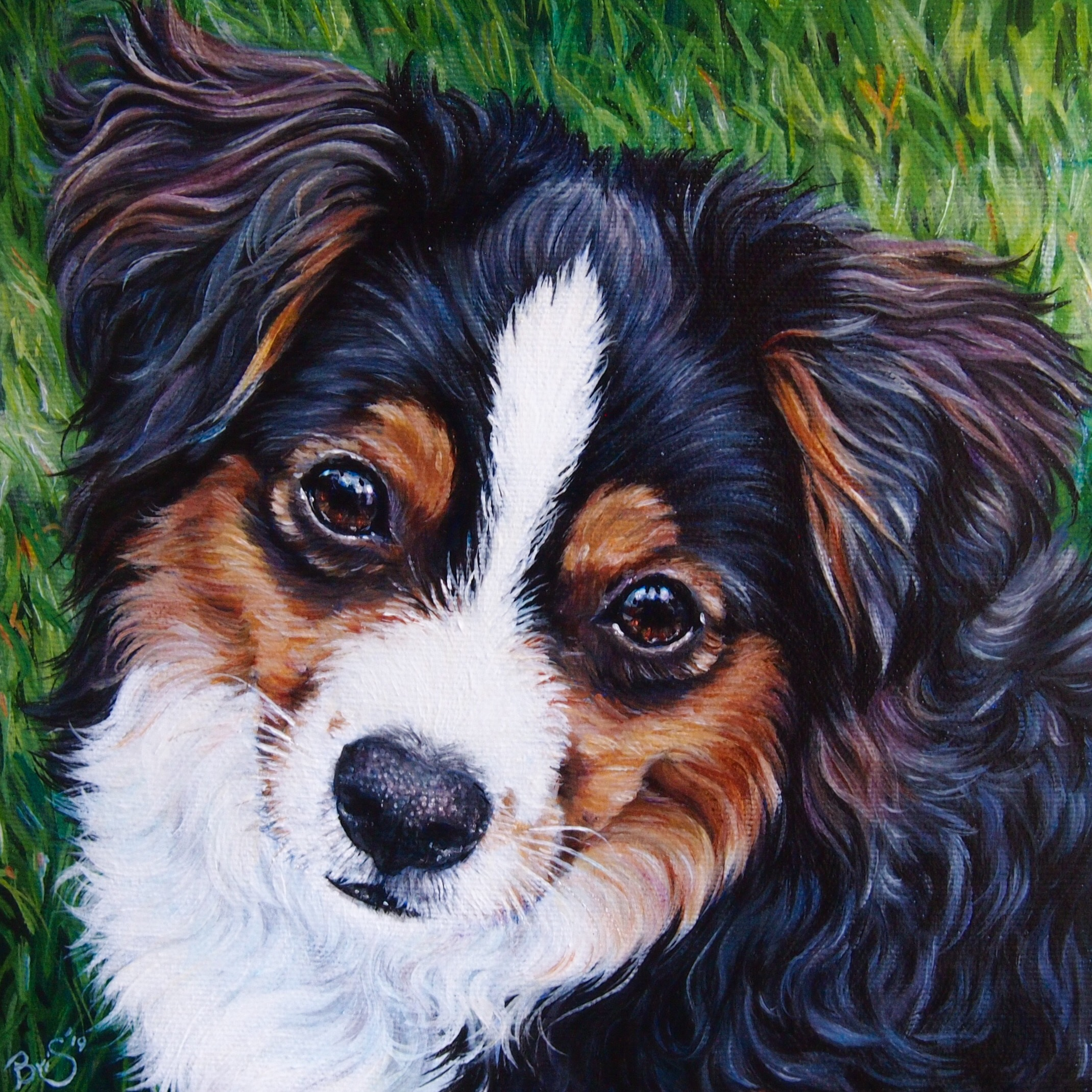 Small square dog portrait