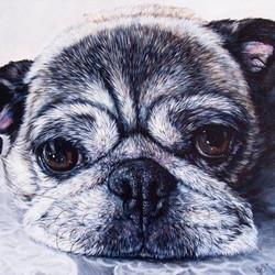 Large 18 inch square portrait