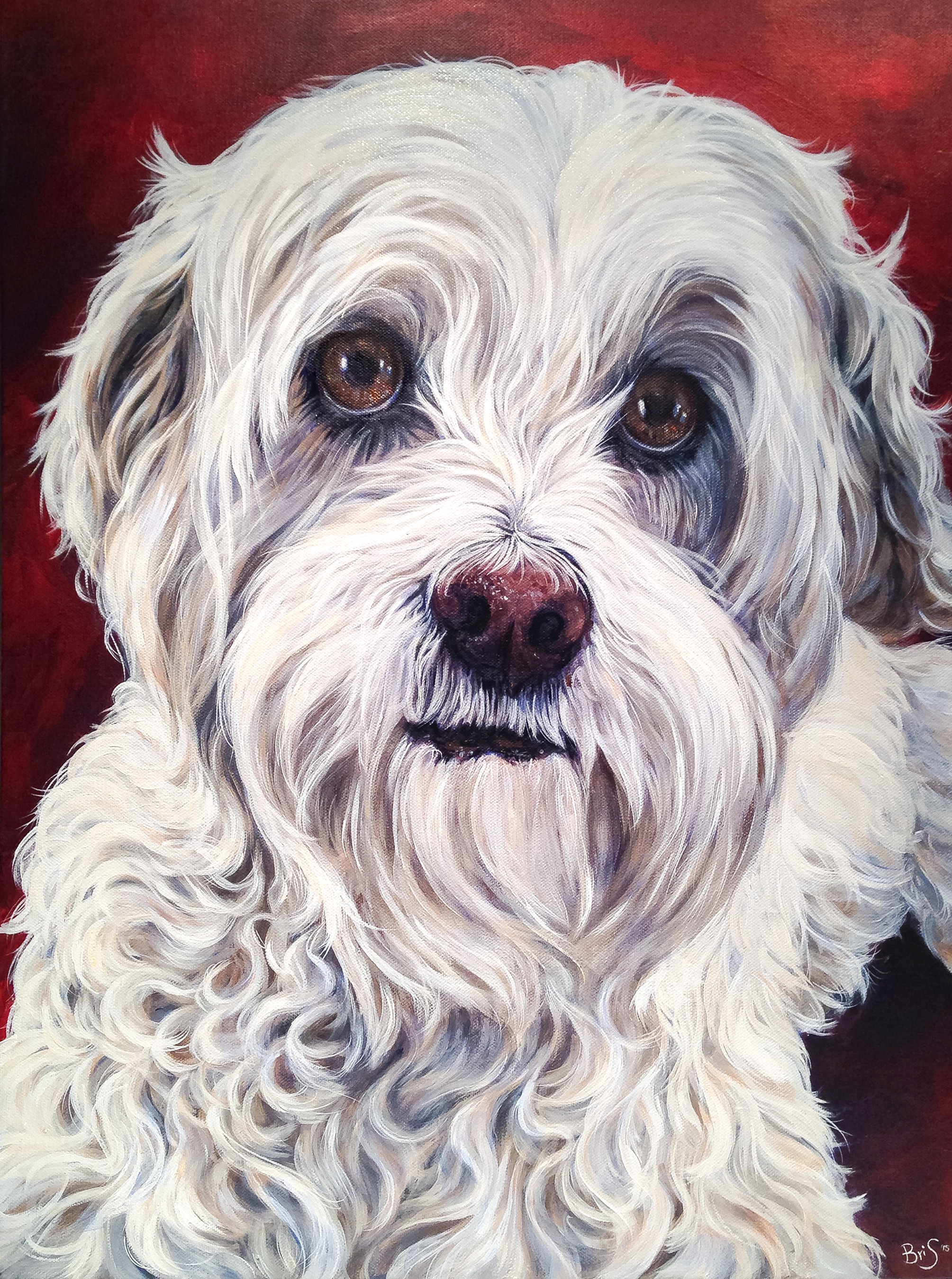 18 by 24 inch dog portrait