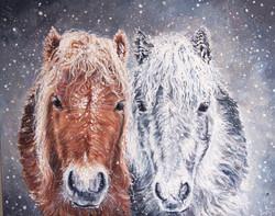 Large size horse portrait