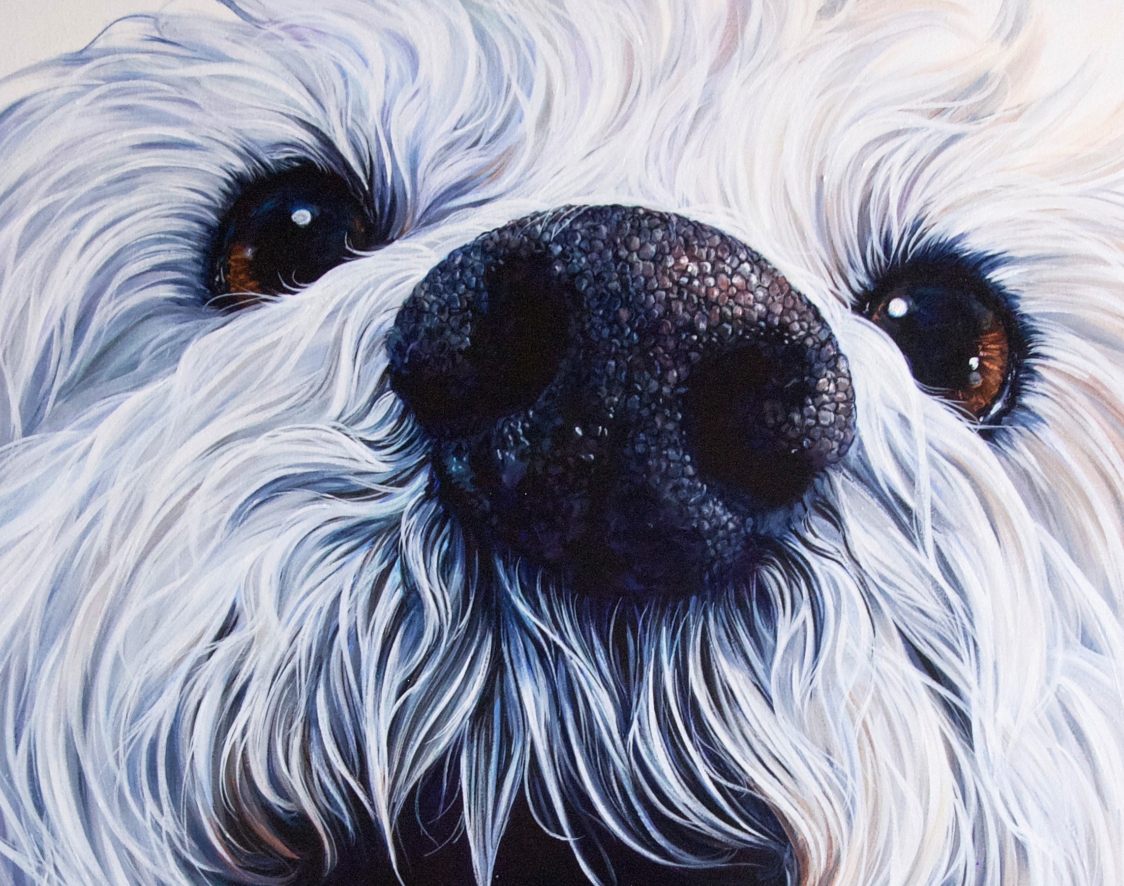 """24"""" x 30"""" Just Furry Face"""