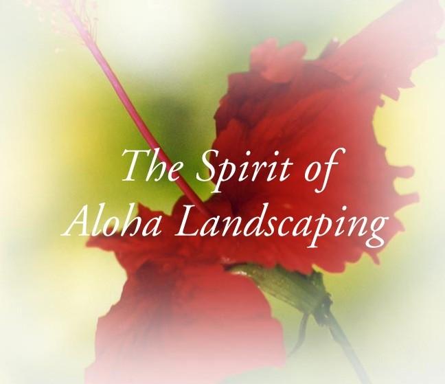Spirit of Aloha 9