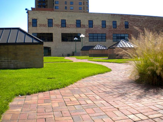 Green-Roof-Minneapolis-Aloha-Landscaping