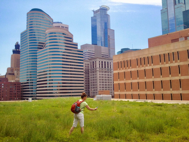 Minneapolis-Public-Library-Green-Roof-Me