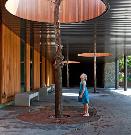 Minnesota-Zoo-Heart-Tree-Growing-Through