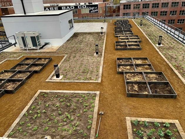 Kansas-City-Green-Roof-Communial-Garden-