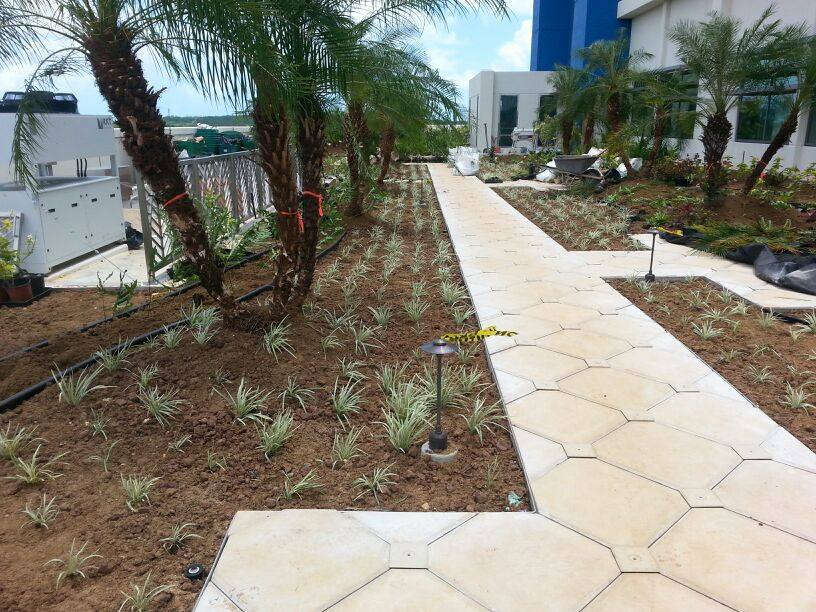 Guam Typhoon-Proof Tile Tech Pavers