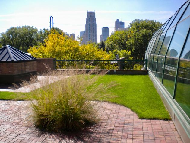 Minneapolis-Green-Roof-Grass-Brick-Paver