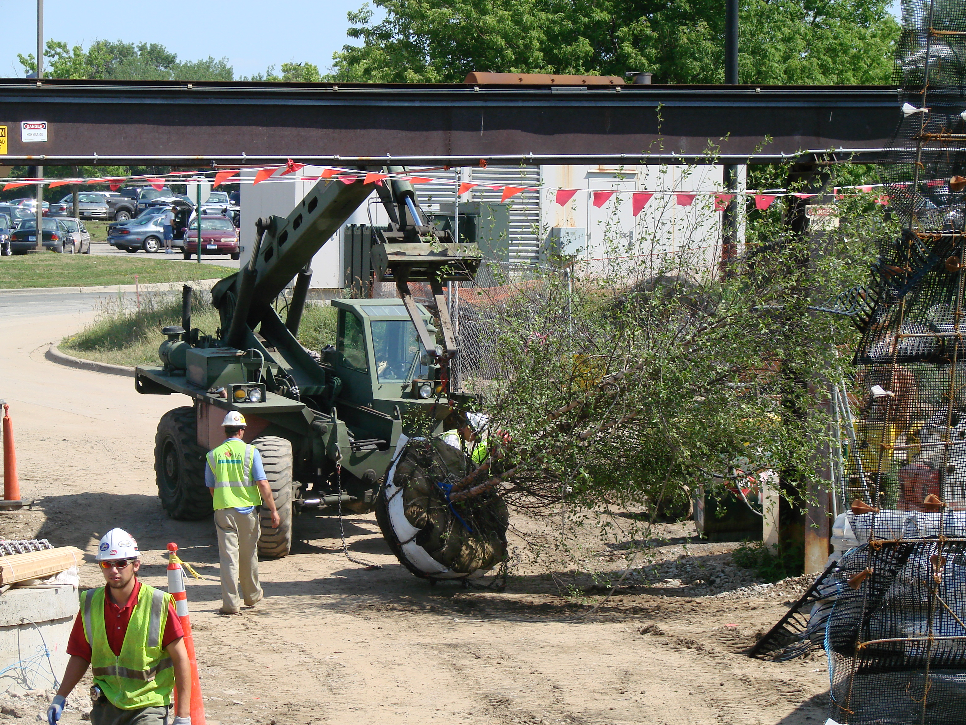 MN Zoo - Moving 800 Trees